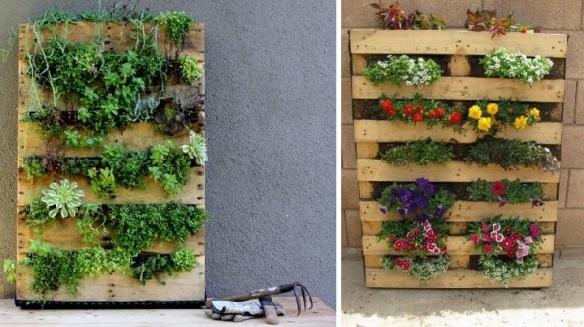 fotos jardim horizontal : fotos jardim horizontal: . Aqui ensina como fazer o jardim vertical da foto da esquerda