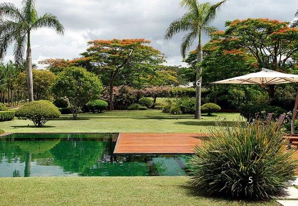 TeT_piscina_revestimento_verde_1_mosaico_de_vidro