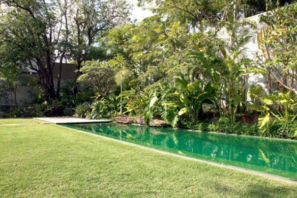 TeT_piscina_revestimento_verde_24_pastilha
