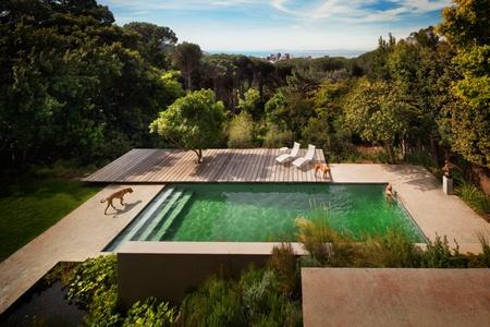 TeT_piscina_revestimento_verde_3